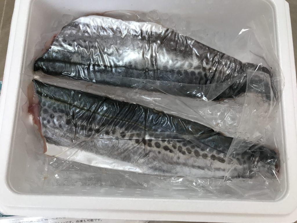 ふるさと納税鮮魚定期便いちき串木野市さごし