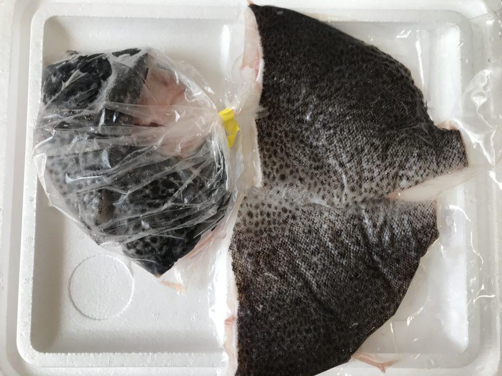 ふるさと納税いちき串木野市鮮魚2月イシガキダイ